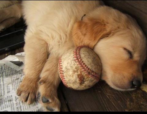 My favorite little ball